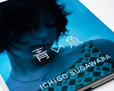 Movie and Photo Book, BLUE FISH